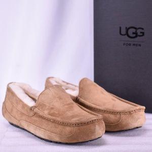 Men's UGG Ascot Chestnut Moccasin Slippers